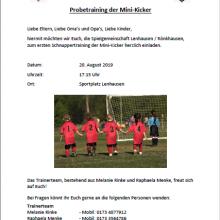 Probetraining der Mini-Kicker am 20.08.